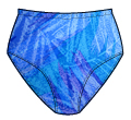 Printed Nylon Modified French Cut Panty -   41413  61